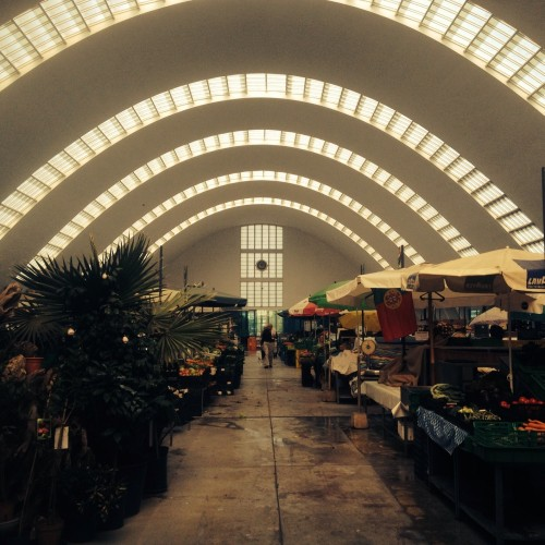 Exciting market in Leixios