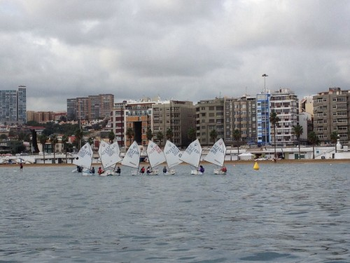 Optimist fleet in Las Palmas.